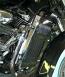Radiator COVER VL800 C50 /T  BOULEVARD NEW VERSION