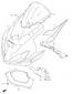 COWLING BODY (PARTS) GSXR 600 2004-05